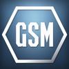 GSM 2015