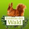 Icône : Die Waldfibel