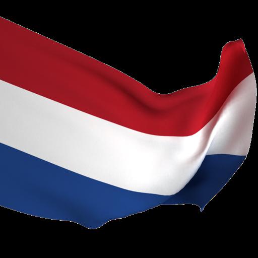 Голландский за месяц