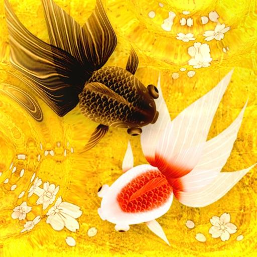 金鱼的池塘:Wa Kingyo – Goldfish Pond