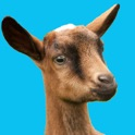 Buttermilk - The Bouncing Baby Goat icon
