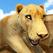 사바나 달리기 . 어린이를위한 야생 동물 시뮬레이터 무료 게임 (Wild Animal Simulation Game)