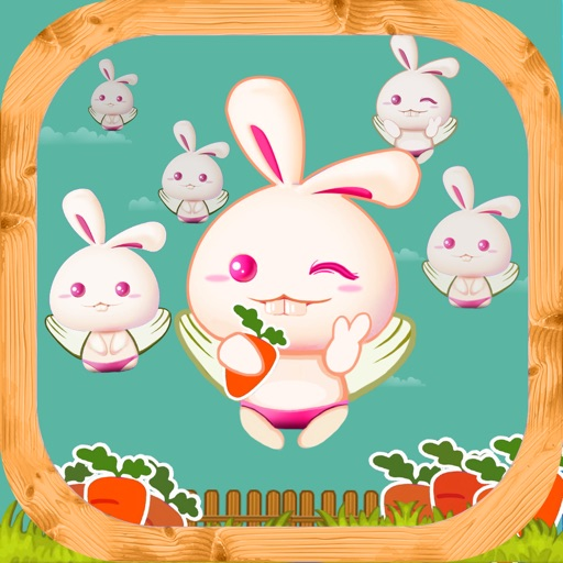 Rabbit Find Carrots iOS App