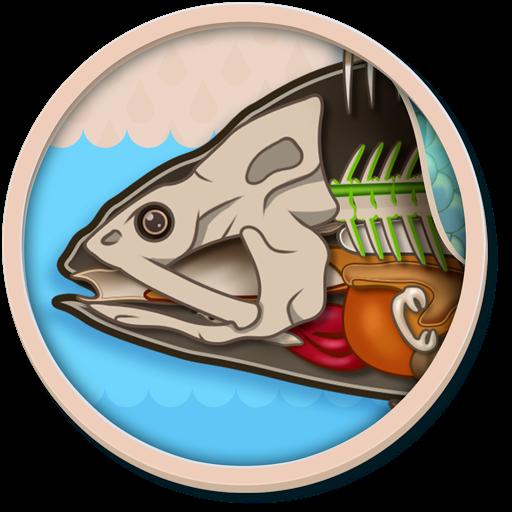 儿童地图集-鱼的解剖