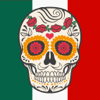 Authentic Mexican Photography Stickers