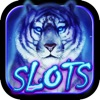 Aмурский тигр казино игровых автоматов — Slots!!!