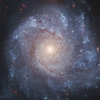 StarMap 3D+: Night Sky, Astronomy & Star Guide