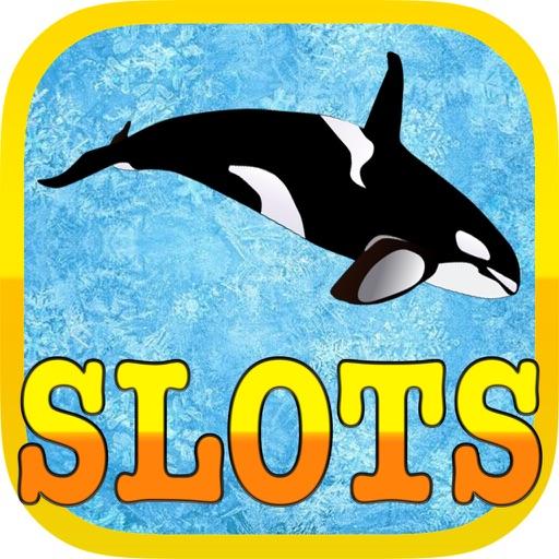 Funny Dolphin Poker Slot Machine iOS App
