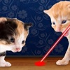 Laser Pointer for Cat