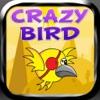 Crazy Bird - Go Far As You Can