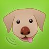 Hundemonitor