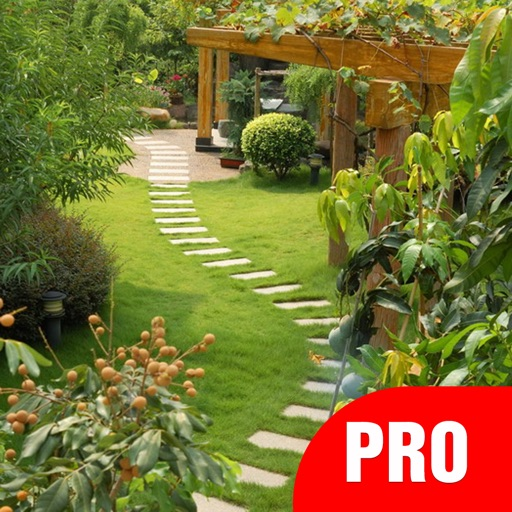 Yard garden design ideas pro landscape designs by space for Pro design landscape