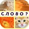 4 фотки 1 слово (Русский)