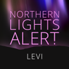 Northern Lights Alert...