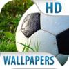 Esporte Papéis De Parede E Fundos Grátis HD Fotos