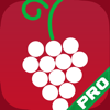 Wine Essential - Vivino Edition Drinkers Pricing