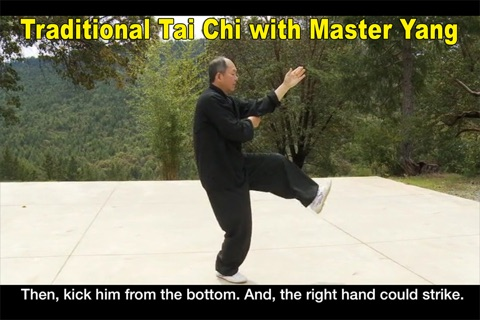 Yang Tai Chi for Beginners Part 2 & 3 screenshot 1