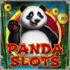 Panda Best Free Slots Game Vegas