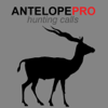 Antelope Calls & Antelope Sounds for Hunting