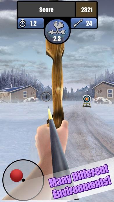 Archery Tournament Deluxe Screenshot