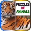 Puzzles of Animals Free