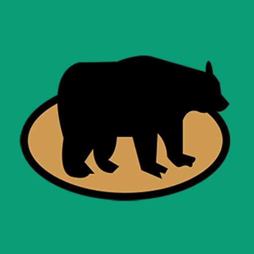 Whack-a-Bear iOS App