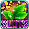 Lucky Green Slots: Place a bet on the maple leaf