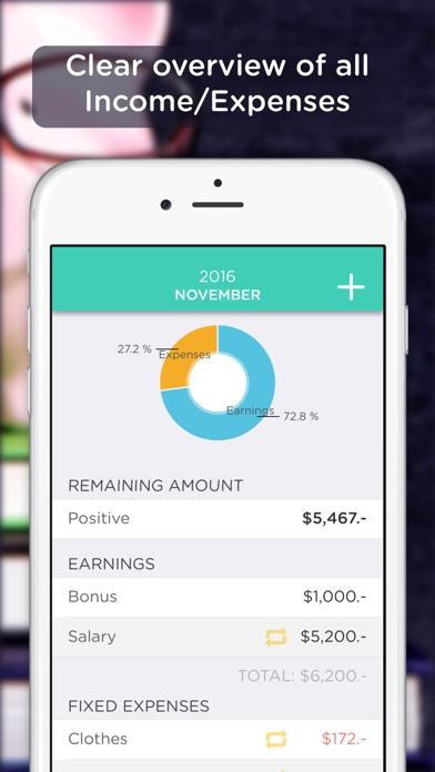 Screenshot von BudgetBook!1