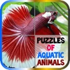 Puzzles of Aquatic Animals Free