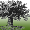 Mother Earth News - America's leading resource for information about sustainability and self-reliance