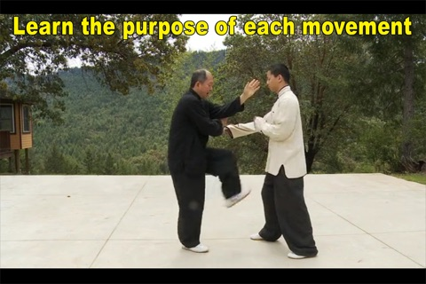 Yang Tai Chi for Beginners Part 2 & 3 screenshot 2