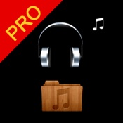 K Music Player Pro - HIFI Hi-End flac Player