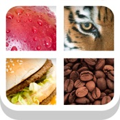 Close Up Pics Quiz   Guess the Word Trivia Games Hack Resources (Android/iOS) proof