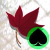 PokerMatch @MatchMate Wiki