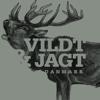Vildt & Jagt i Danmark