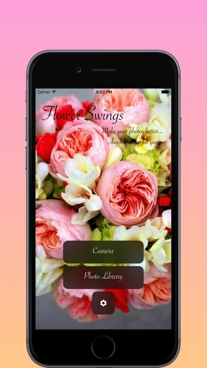 Vsco Photo Editor Layout Collage Maker By Angel Jones
