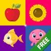 Sorter Lite - Giochi educativi per bambini gratis