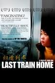 Lixin Fan - Last Train Home (2009)  artwork