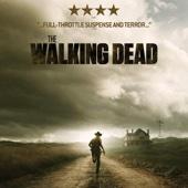 The Walking Dead, Saison 2, Partie 1 (VOST)