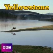 Yellowstone, Series 1 - Yellowstone Cover Art