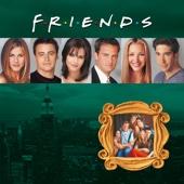 Friends, Season 6 - Friends Cover Art