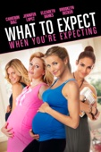 What to Expect When You're Expecting Full Movie Legendado