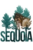 Andy Landen - Sequoia  artwork