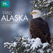Wild Alaska - Wild Alaska Cover Art