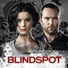 Blindspot - Spurlos verschwunden  artwork