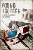 Steven DeGennaro - Found Footage  artwork