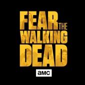 Fear the Walking Dead - Fear the Walking Dead, Season 3  artwork