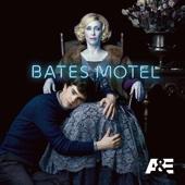 Bates Motel, Season 5 - Bates Motel Cover Art