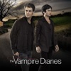 The Vampire Diaries - It's Been a Hell of a Ride  artwork