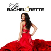 The Bachelorette - The Bachelorette, Season 13  artwork